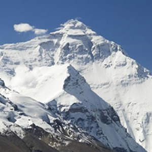 Teleperformance achieves high scores on the Everest Group PEAK Matrix™
